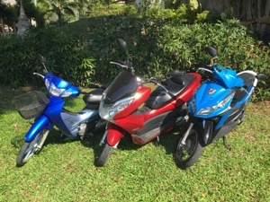 Rent motor cycles in Phuket